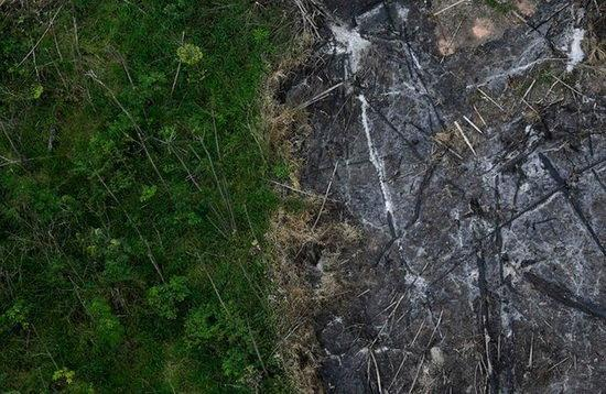 مخالفت برزیل با پذیرش کمک محیط زیستی گروه 7