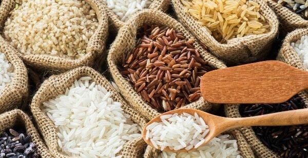 آشنایی با ارقام برنج