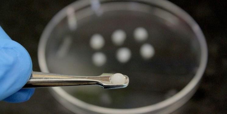 یک واکسن دیگر برای ویروس کرونا آزمایش می گردد