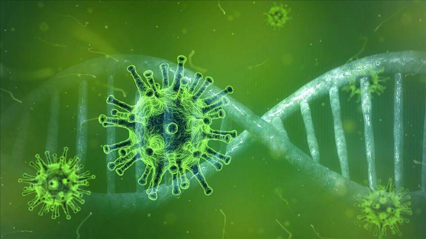 داروی ضدویروس مؤثر برای درمان کرونا در ایران فراوری شد