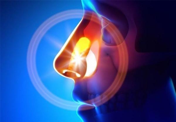 کشف نانوذراتی که موجب بهبود حس بویایی میشود